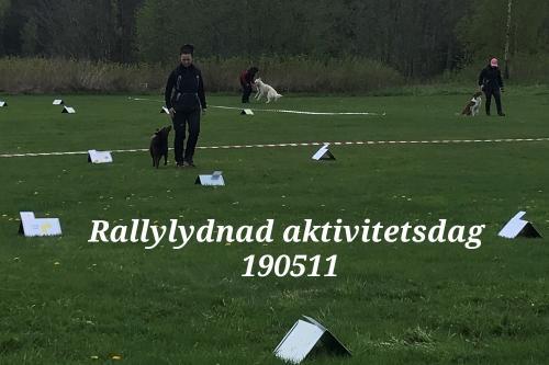 Rallylydnad aktivitetsdag 190511