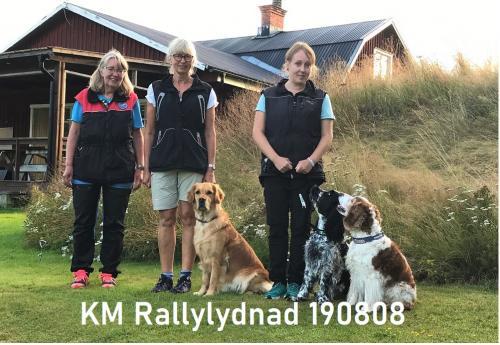 KM Rallylydnad 190808