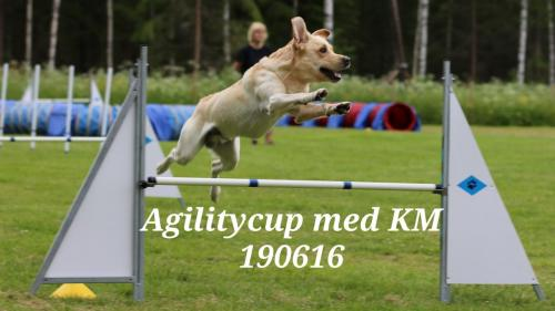 Agilitycup med KM 190616